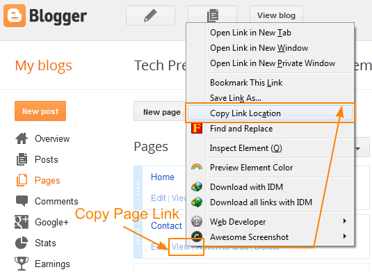 Copy Blogger Page Link