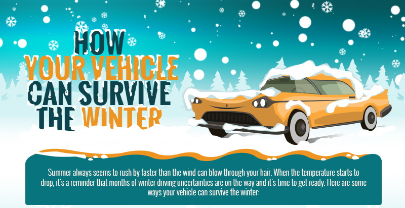 protect cars in winters