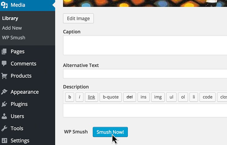 WP Smush Plugin
