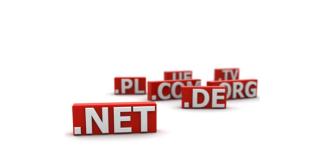 Choosing an online business domain name