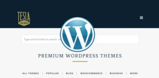 TeslaThemes - Best WP themes