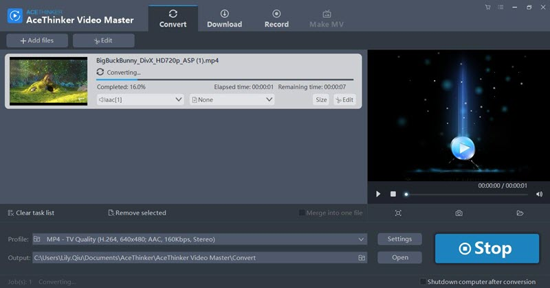 AceThinker Video Master Review Video Converting