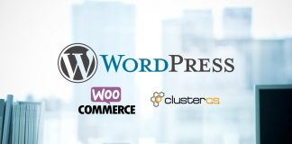 ClusterCS - E-commerce Wordpress Site