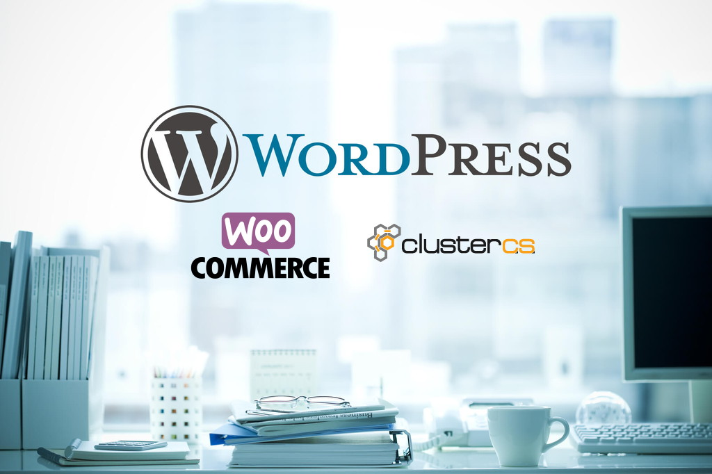 How You Will Set Up E-commerce WordPress Site Using ClusterCS?