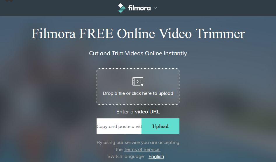 filmora support email