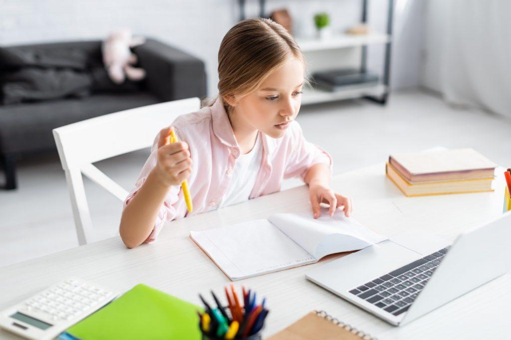 Advantages of online schooling
